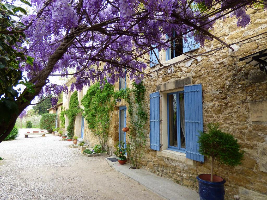Achat Maison 16 pièces à Althen-des-Paluds - vignette-1