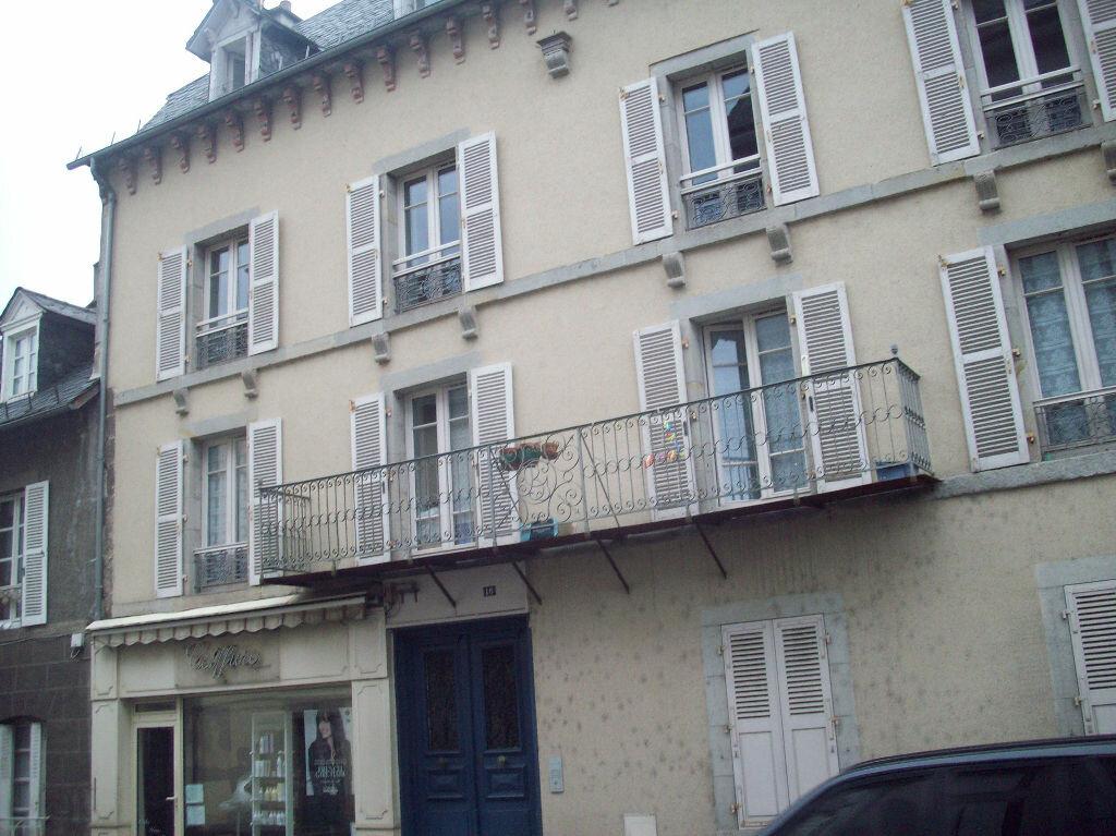 Achat Appartement 4 pièces à Vic-sur-Cère - vignette-2