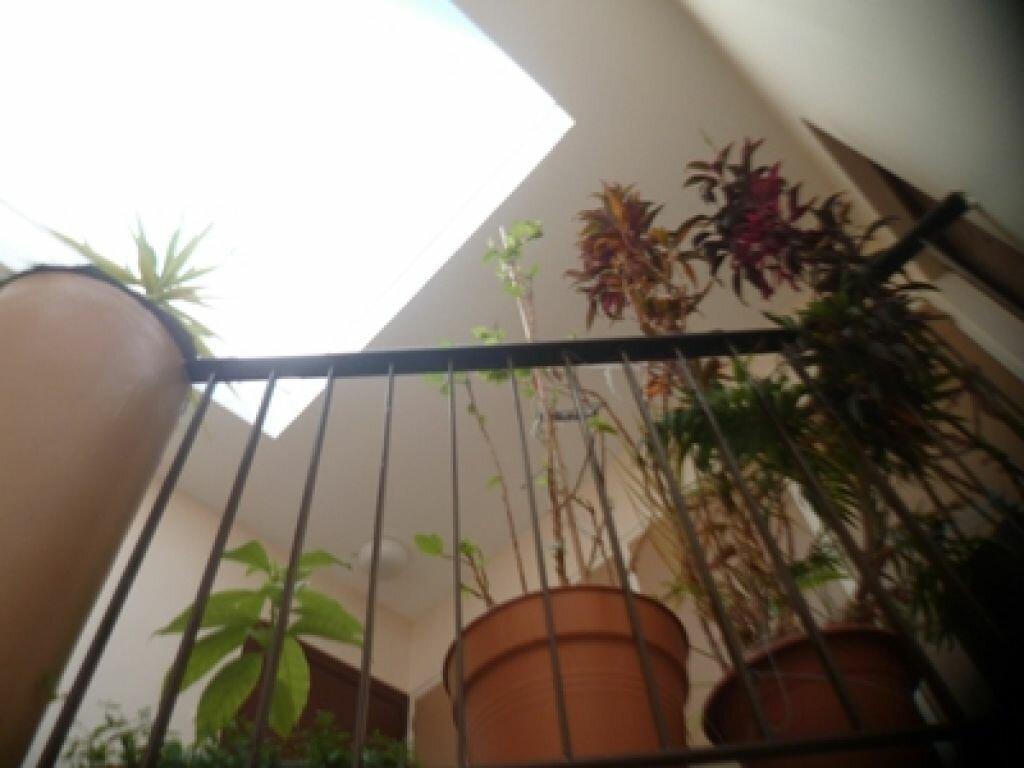 Achat Appartement 3 pièces à Balaruc-les-Bains - vignette-2