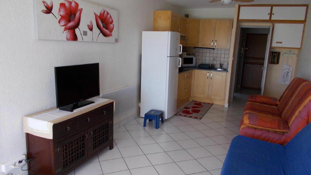 Achat Appartement 1 pièce à Agde - vignette-5