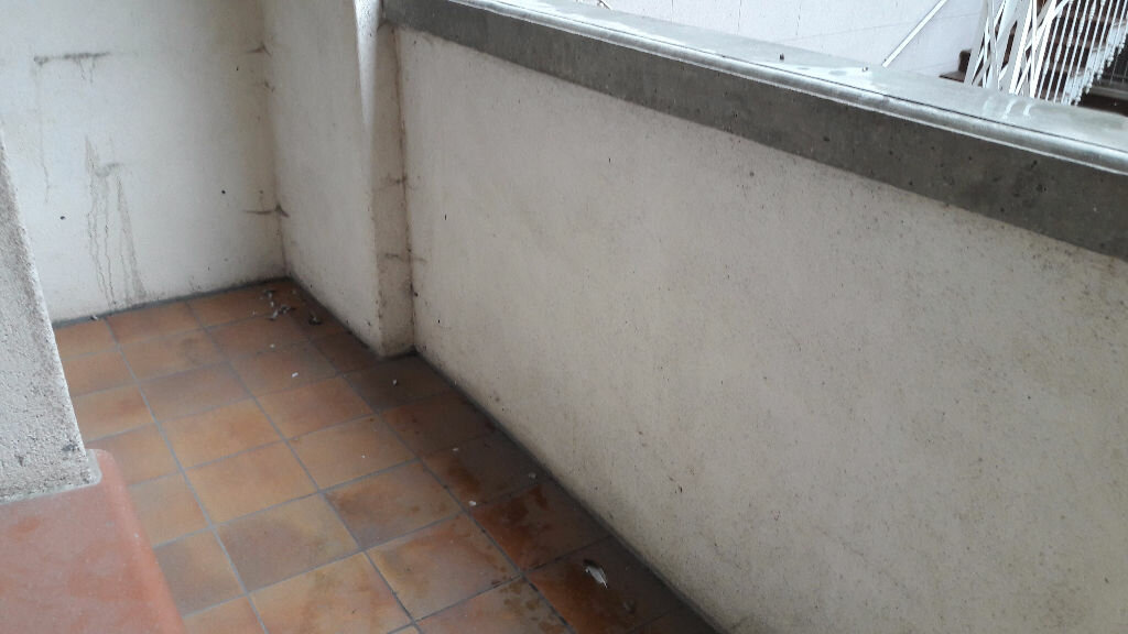 Achat Appartement 3 pièces à Beaumont-de-Lomagne - vignette-3