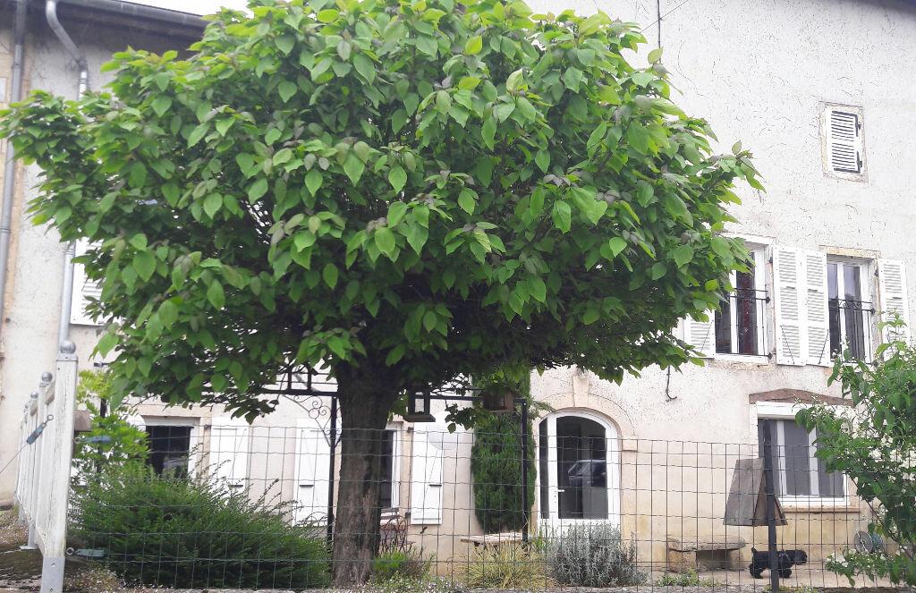 Achat Maison 6 pièces à Villereversure - vignette-7