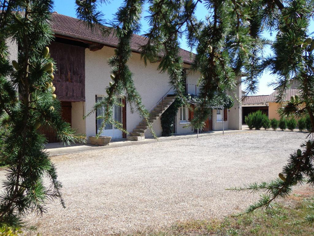Achat Maison 3 pièces à Saint-André-sur-Vieux-Jonc - vignette-1