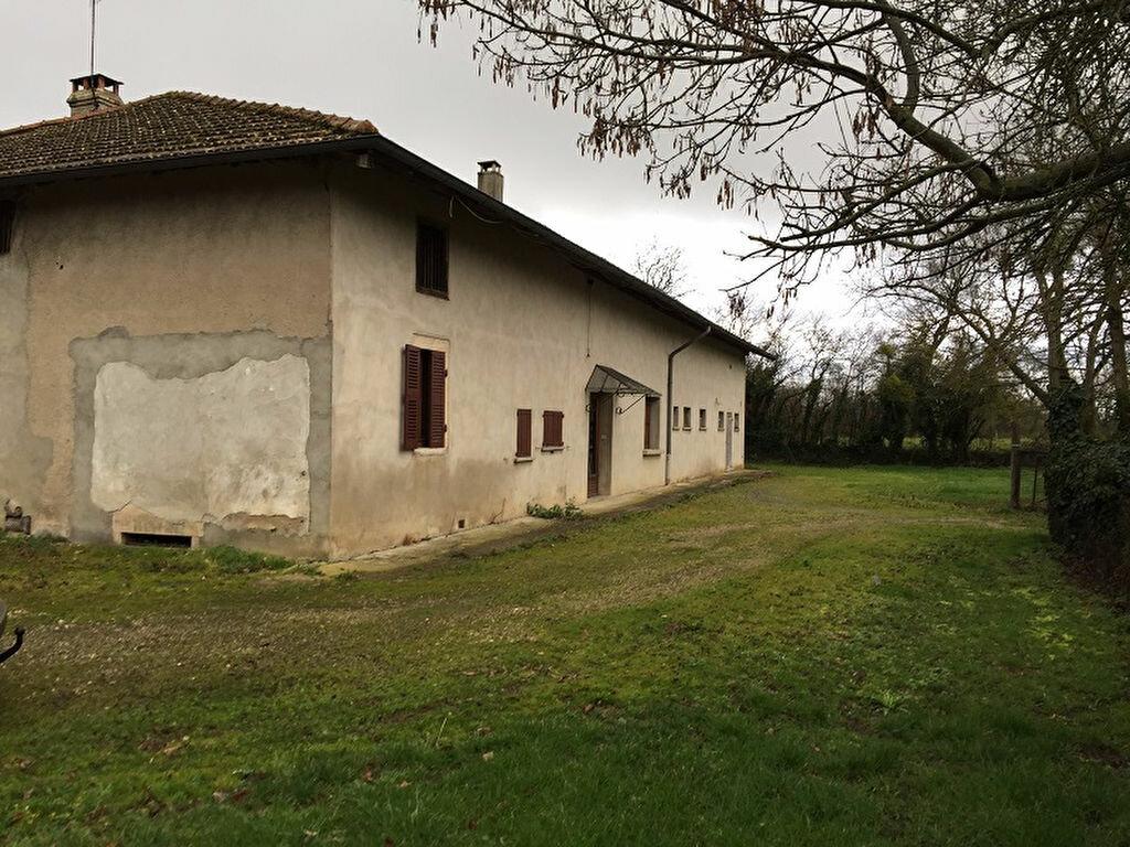 Achat Maison 6 pièces à Montrevel-en-Bresse - vignette-1