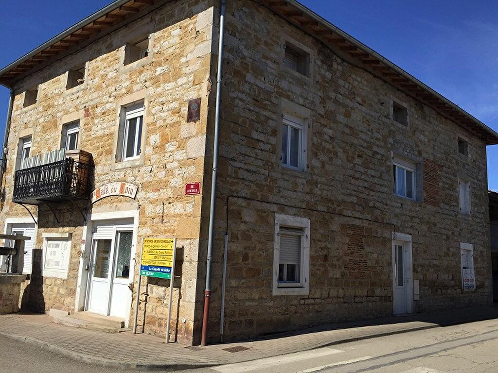 Achat Immeuble  à Cormoz - vignette-1