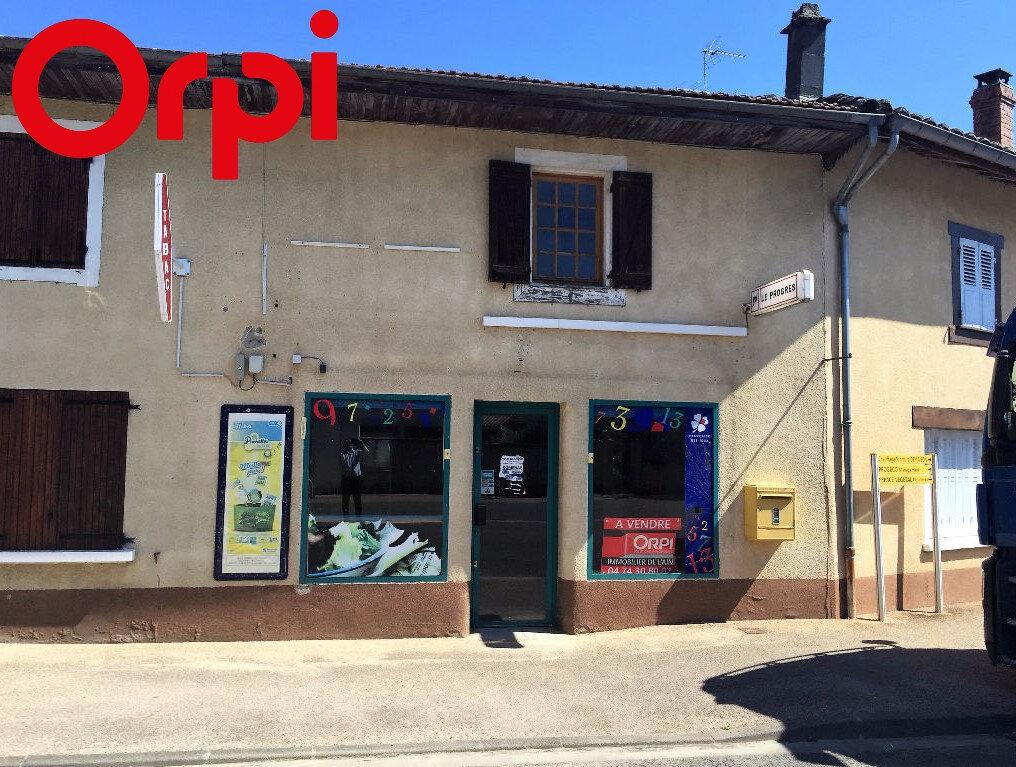 Achat Maison 5 pièces à Saint-Didier-d'Aussiat - vignette-1