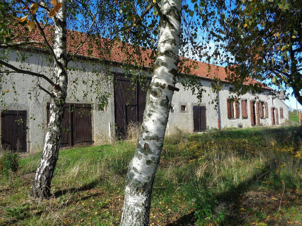 Achat Maison 3 pièces à Saint-Éloy-les-Mines - vignette-5