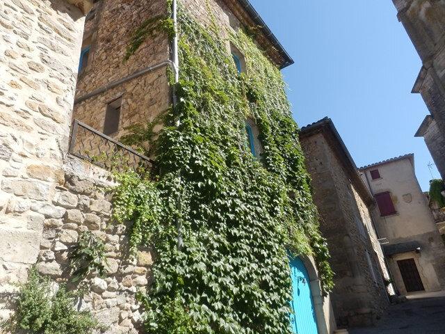 Achat Maison 6 pièces à Saint-Sauveur-de-Cruzières - vignette-1
