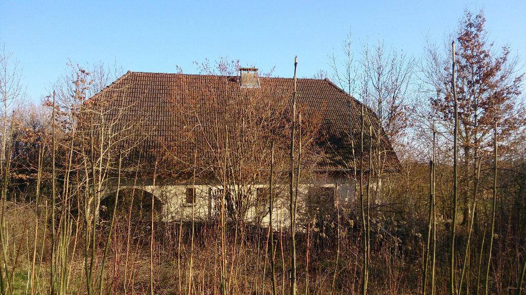Achat Maison 5 pièces à Divonne-les-Bains - vignette-2