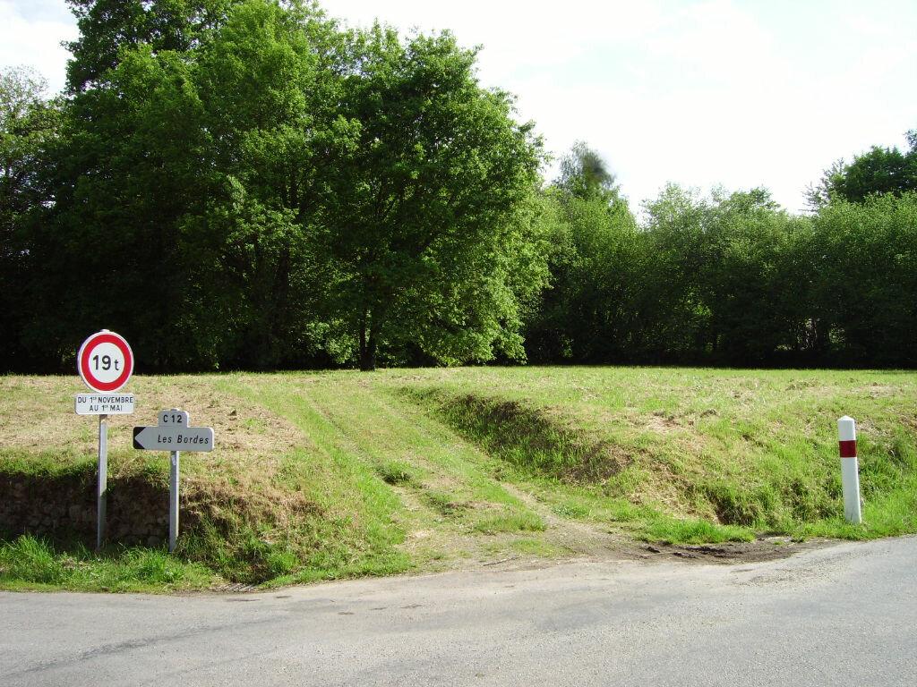 Achat Terrain  à Jabreilles-les-Bordes - vignette-5