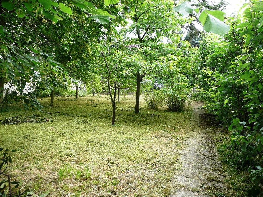 Achat Terrain  à Champigny-sur-Marne - vignette-1
