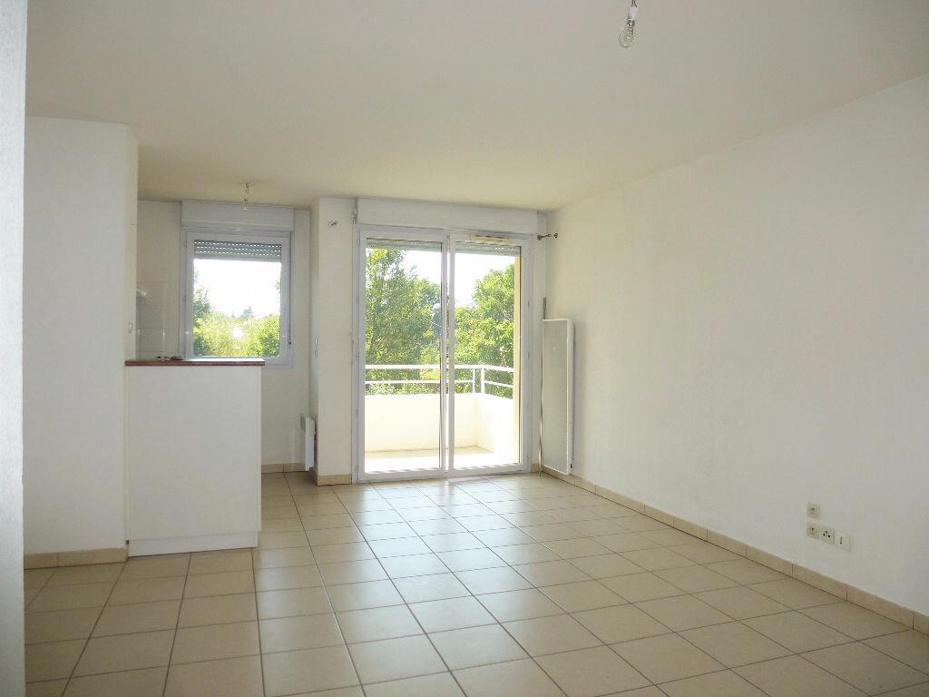 Location Appartement 2 pièces à Perpignan - vignette-3