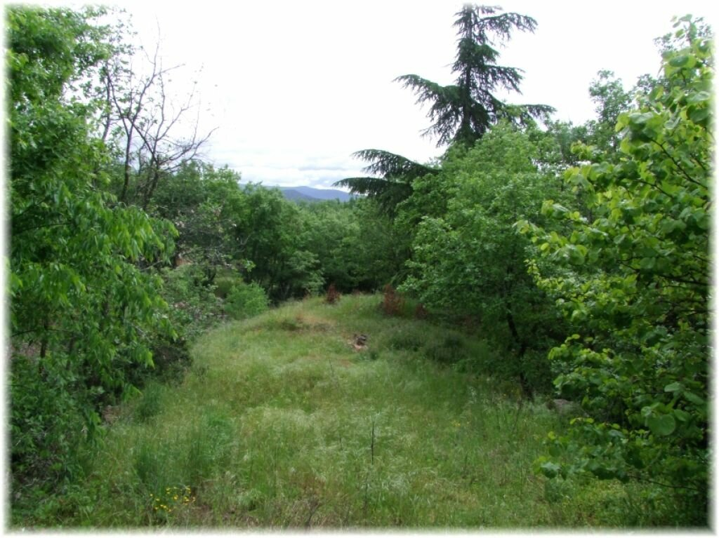 Achat Terrain  à Saint-Alban-Auriolles - vignette-1