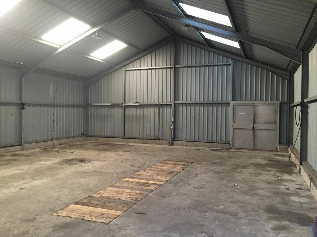 Location Entrepôt  à Neuville-Saint-Amand - vignette-2