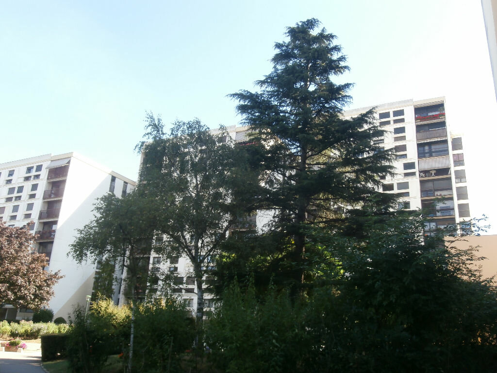 Achat Appartement 4 pièces à L'Haÿ-les-Roses - vignette-3