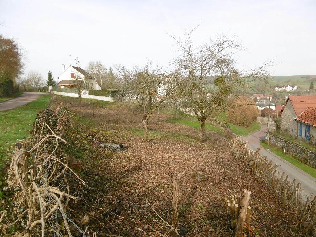 Achat Terrain  à Montreuil-aux-Lions - vignette-1