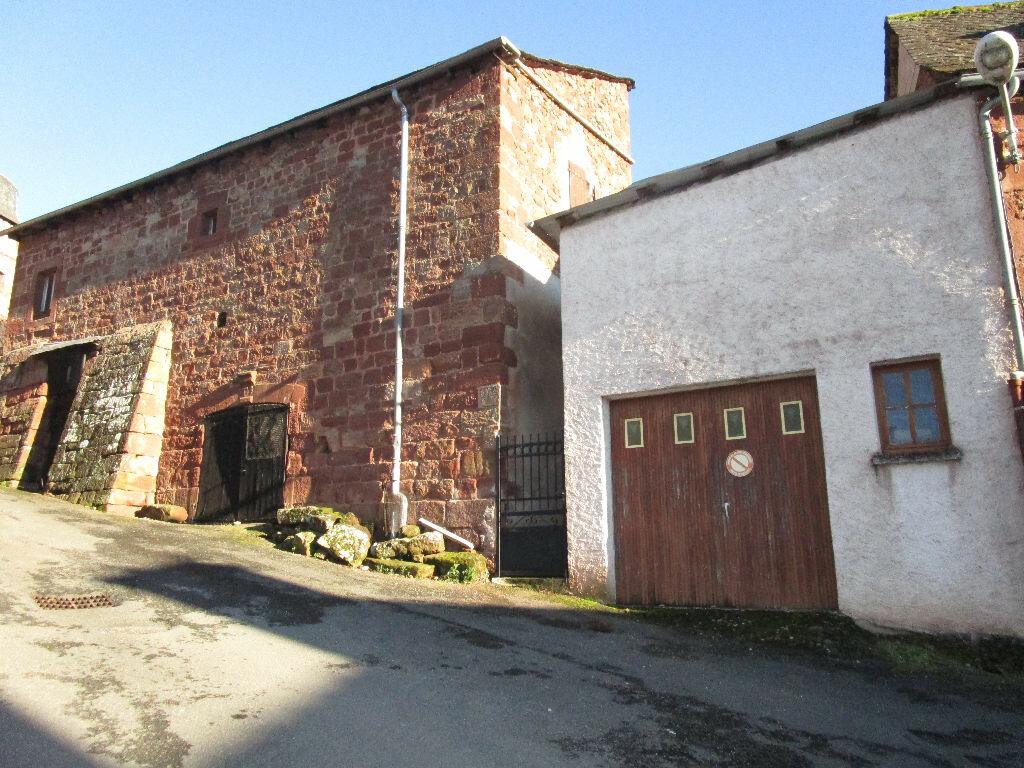 Achat Maison 5 pièces à Saint-Cyprien-sur-Dourdou - vignette-3