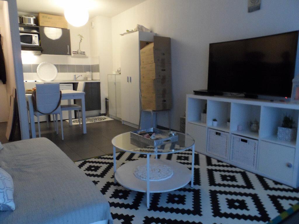 Location Appartement 2 pièces à Toulouse - vignette-1