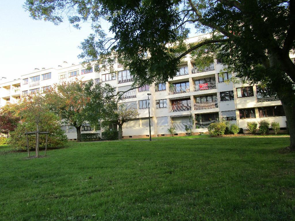Achat Appartement 2 pièces à Chennevières-sur-Marne - vignette-3