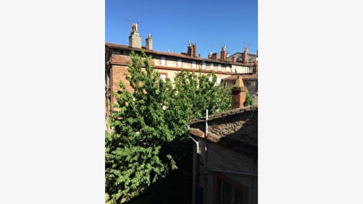 Location Appartement 3 pièces à Toulouse - vignette-14