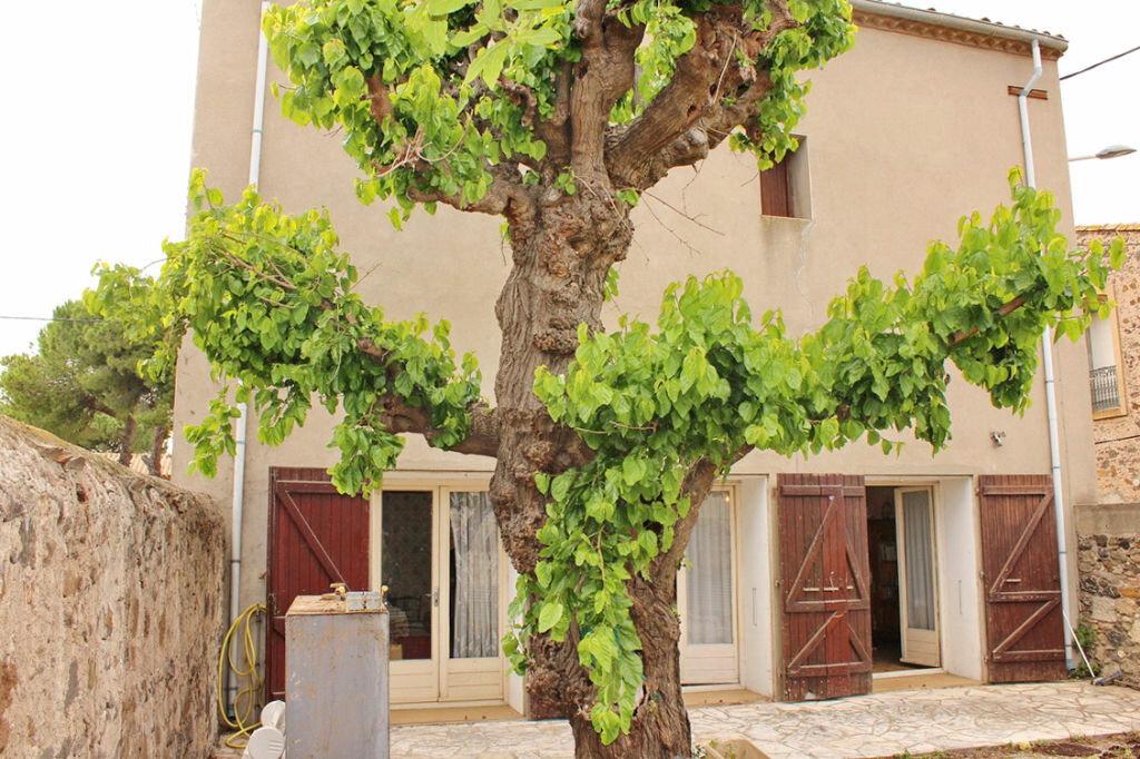 Achat Maison 8 pièces à Marseillan - vignette-1