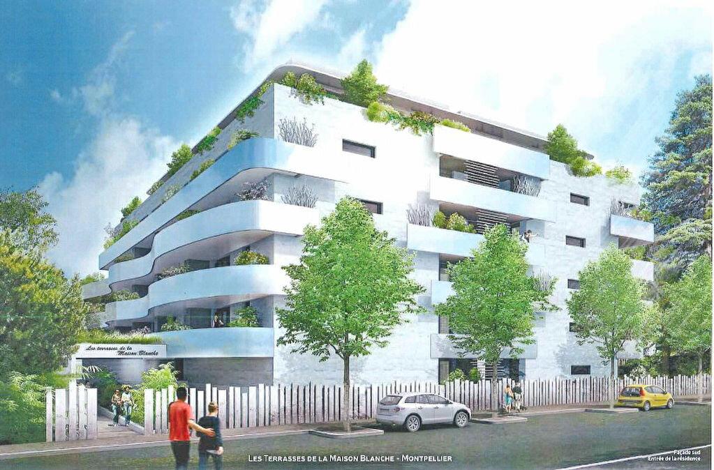 Achat Appartement 1 pièce à Montpellier - vignette-1