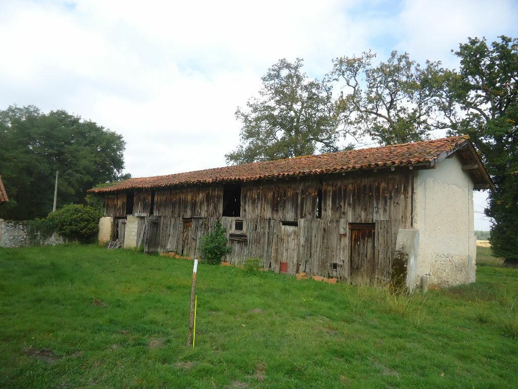 Achat Maison 9 pièces à Lucbardez-et-Bargues - vignette-5