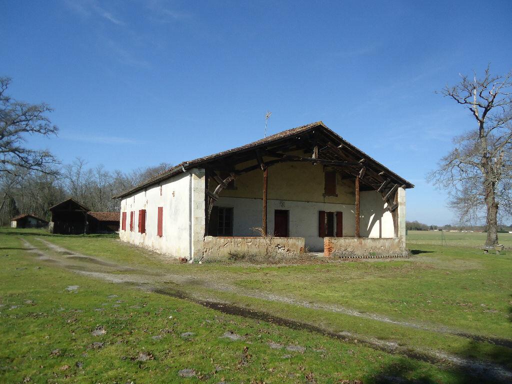 Achat Maison 9 pièces à Lucbardez-et-Bargues - vignette-6