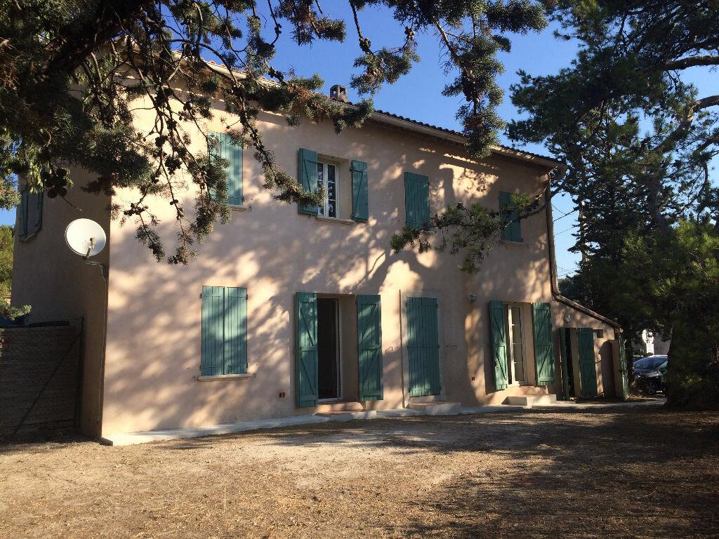 Location Appartement 3 pièces à Évenos - vignette-1