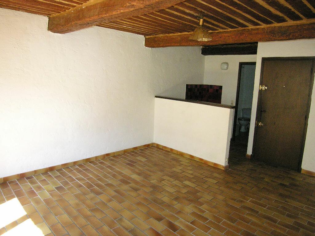 Location Appartement 1 pièce à Mouans-Sartoux - vignette-3