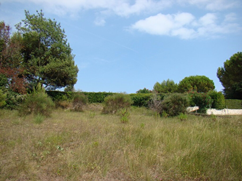 Achat Terrain  à Cagnes-sur-Mer - vignette-1