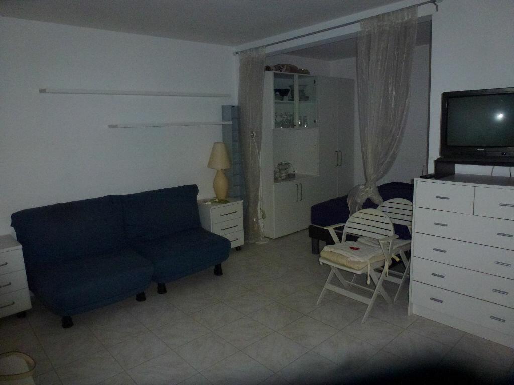 Location Appartement 1 pièce à Saint-Laurent-du-Var - vignette-2
