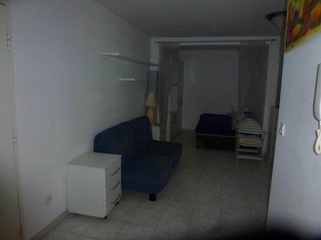 Location Appartement 1 pièce à Saint-Laurent-du-Var - vignette-3