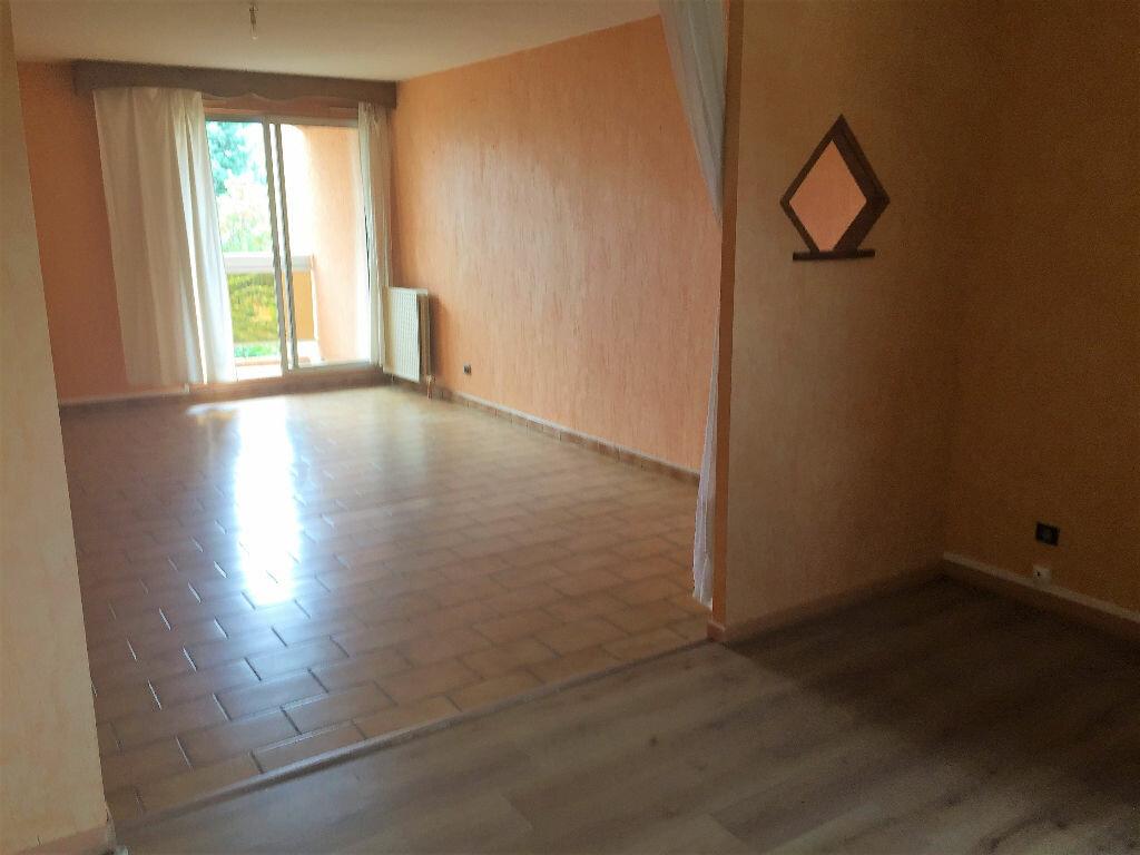 Location Appartement 3 pièces à Albi - vignette-2