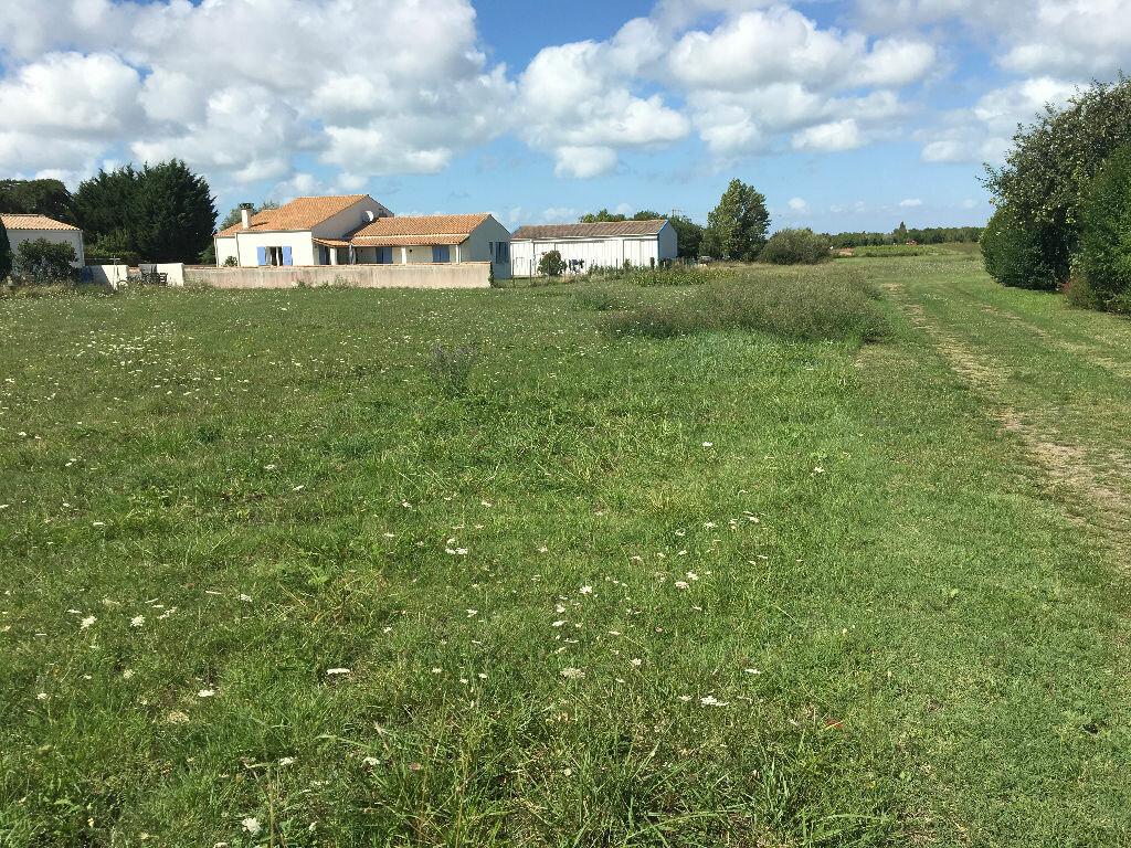 Achat Terrain  à Saint-Pierre-d'Oléron - vignette-5