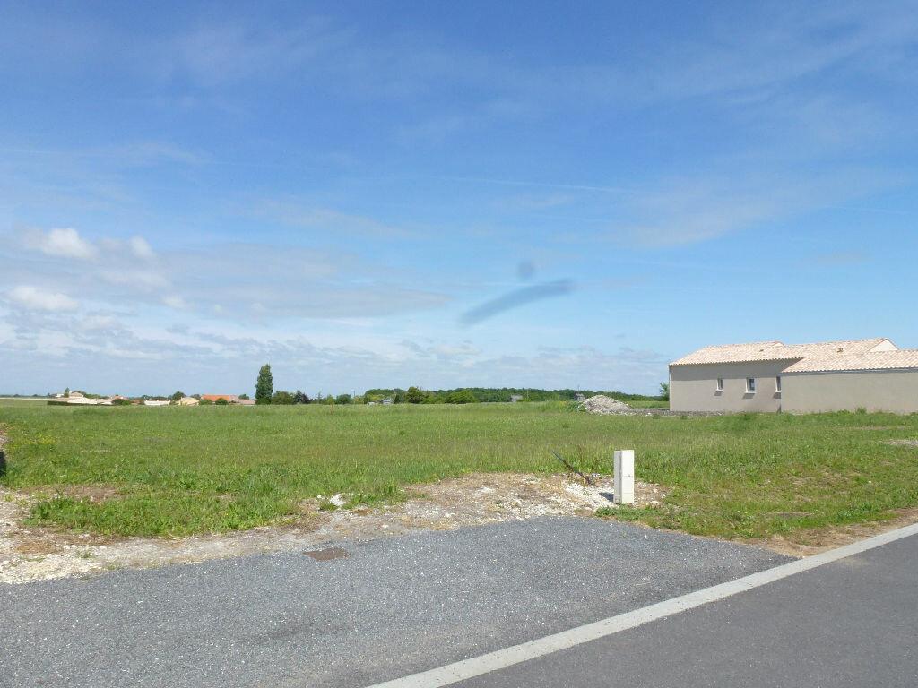Achat Terrain  à Saint-Sulpice-de-Royan - vignette-1