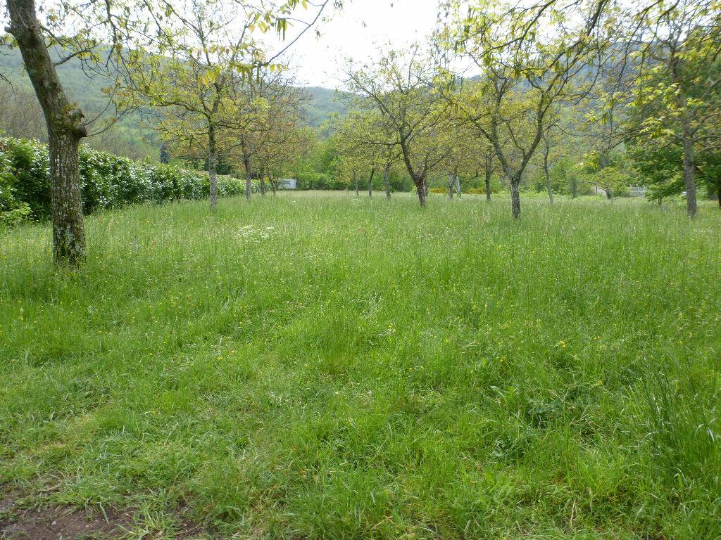 Achat Terrain  à Montpezat-sous-Bauzon - vignette-1