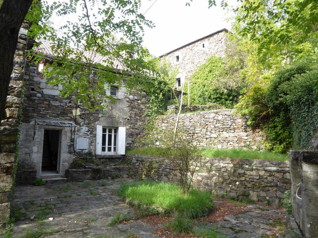 Achat Maison 5 pièces à Sablières - vignette-4