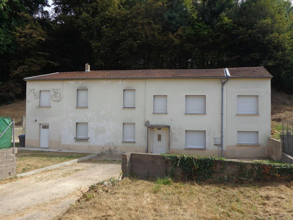 Achat Maison 9 pièces à Kédange-sur-Canner - vignette-6