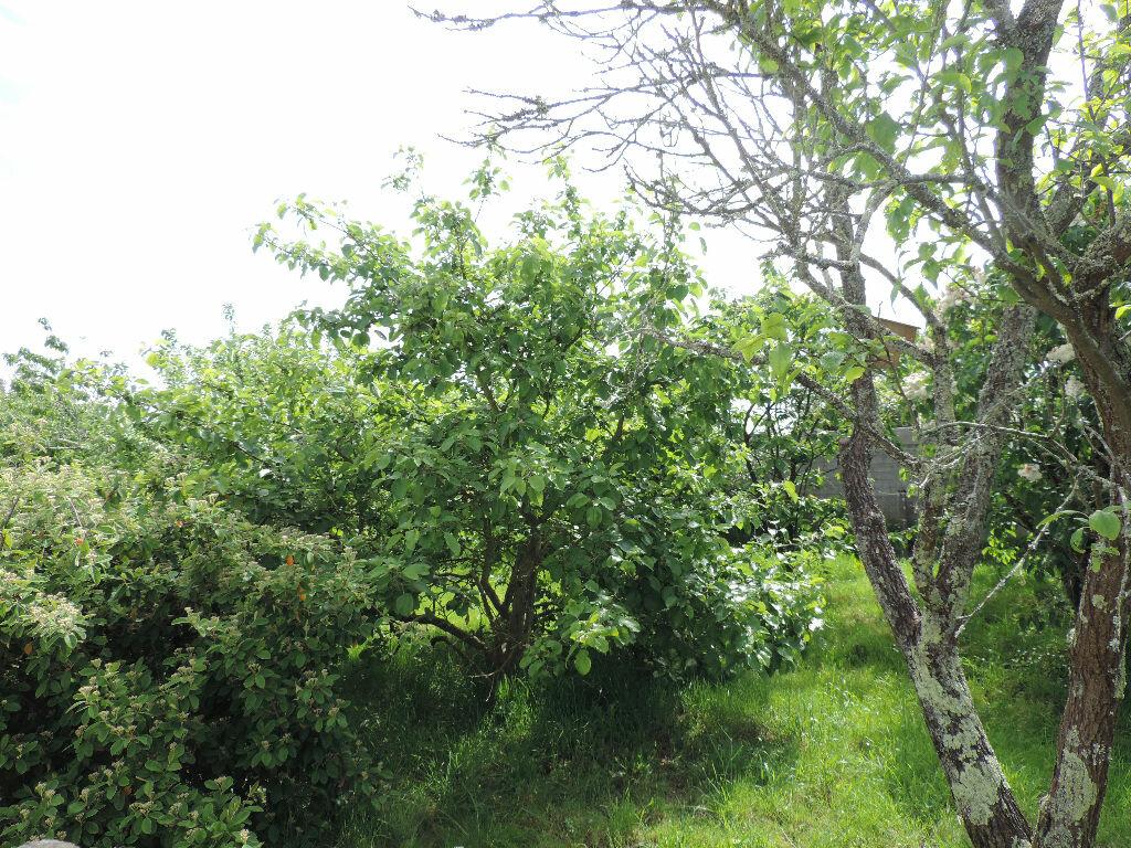 Achat Terrain  à Saint-Joachim - vignette-2