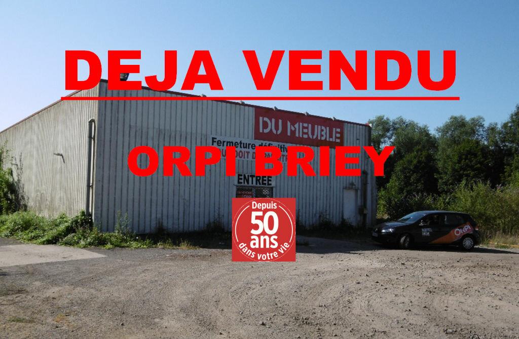 Achat Immeuble  à Briey - vignette-1