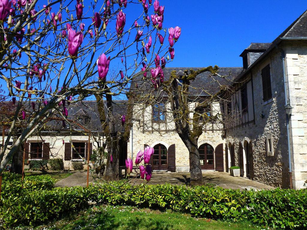 Achat Maison 10 pièces à Terrasson-Lavilledieu - vignette-15