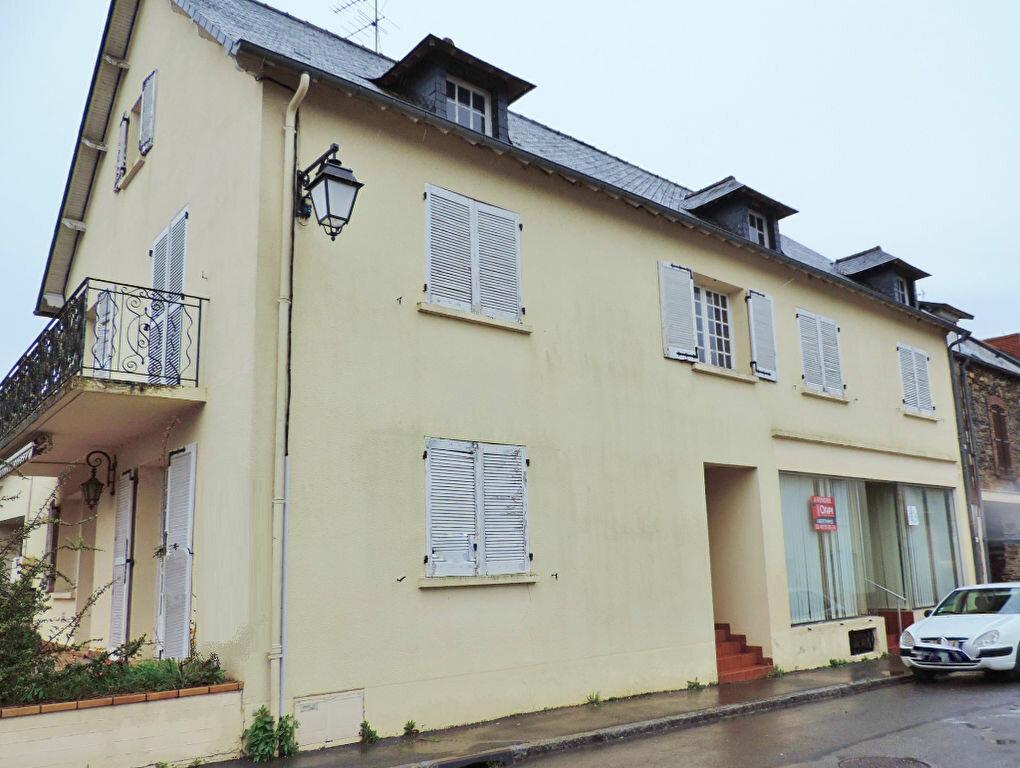 Achat Maison 10 pièces à Saint-Sulpice-des-Landes - vignette-1