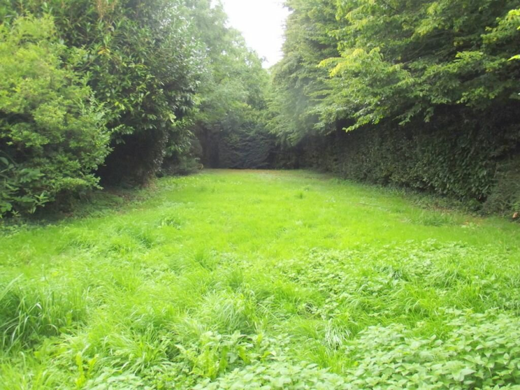 Location Maison 10 pièces à Pouancé - vignette-8