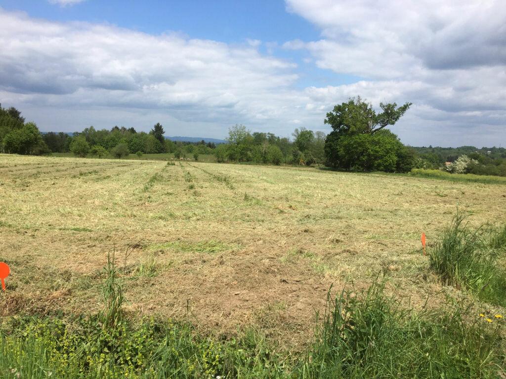 Achat Terrain  à Cognac-la-Forêt - vignette-1