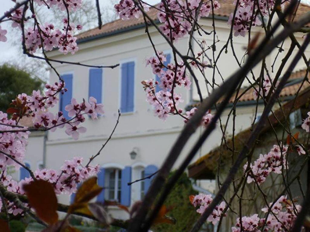 Achat Maison 10 pièces à Buzet-sur-Tarn - vignette-7