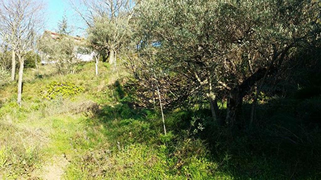 Achat Terrain  à Roussillon - vignette-1