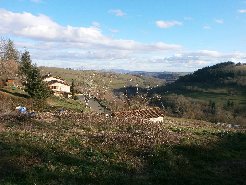 Achat Terrain  à Saint-Clément-sur-Valsonne - vignette-1