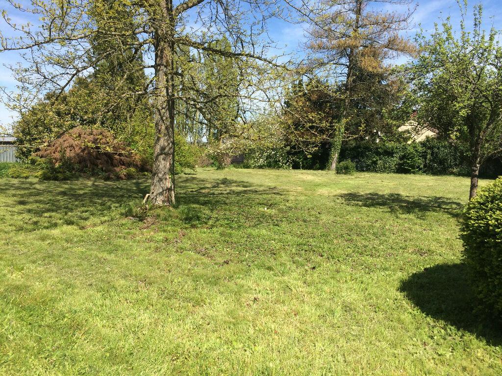 Achat Terrain  à Chailly-en-Brie - vignette-1