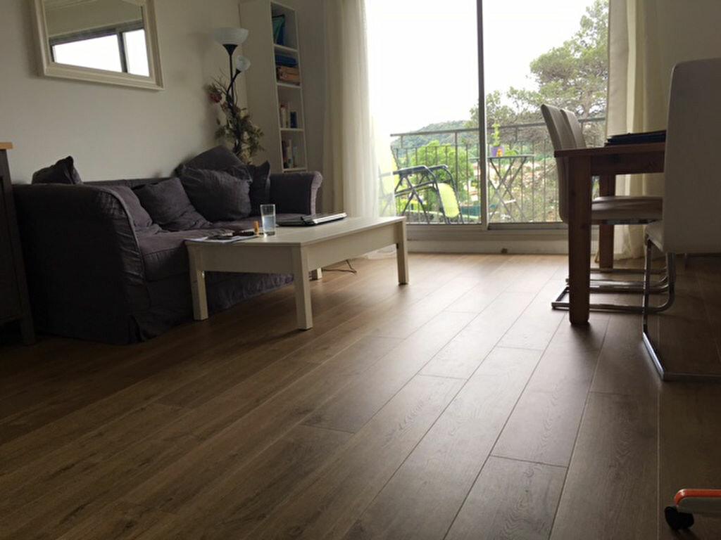Achat Appartement 1 pièce à Villeneuve-Loubet - vignette-4